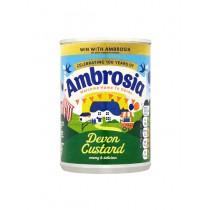 AMBROSIA CUSTARD CAN BOX