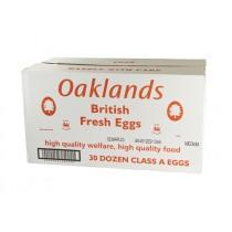 EXTRA EGGS UK LION (OAKLAND) BOX