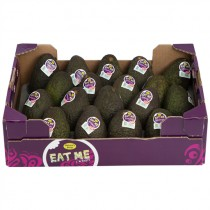 -- AVOCADO HASS 18's BOX