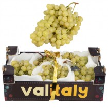 -- GRAPE WHITE PREE PACK (BEYAZ UZUM PAKET) BOX