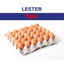 LESTER EGG MEDIUM 30 BOX