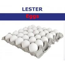 LESTER EGG WHITE MEDIUM 30 BOX