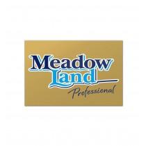 MEADOWLAND REGULAR PROFESSIONAL MARGARINE LIKE BUTTER BOX