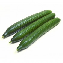 -- CUCUMBER LONG DUTCH (UZUN SALATALIK) BOX