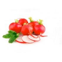 -- RADISH RED SMALL (KUCUK KIRMIZI TURP) EACH