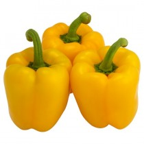 -- PEPPER YELLOW CUP 5KG BOX
